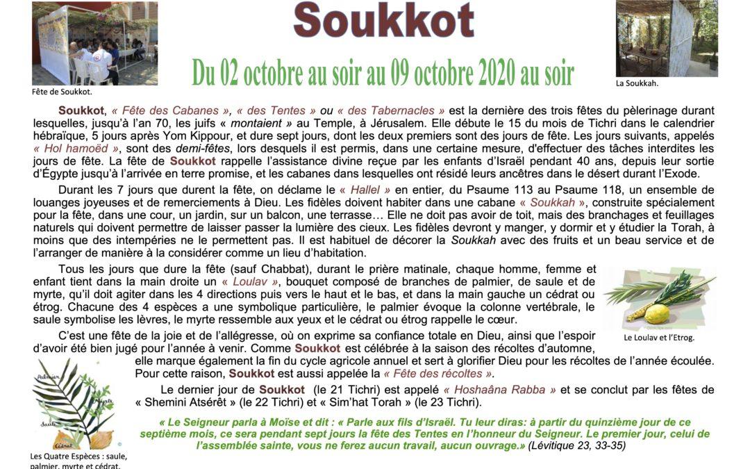 Au fil du temps liturgique … Soukkot du 02 au 09 octobre !